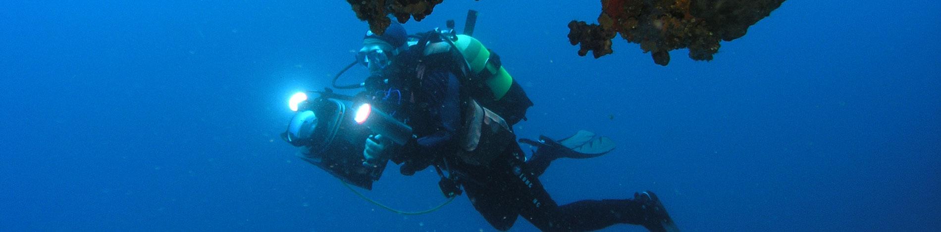 Unterwasser Aufnahmen